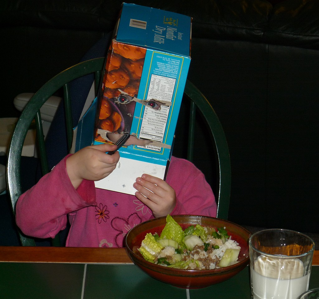 Winnie eating dinner with a box on her head